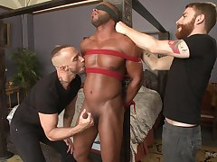 Black show the way gets dominated by two white barebacks